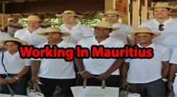 work-in-mauritius